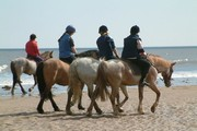 ../images/Horseback-riding-on-beach-180.jpg